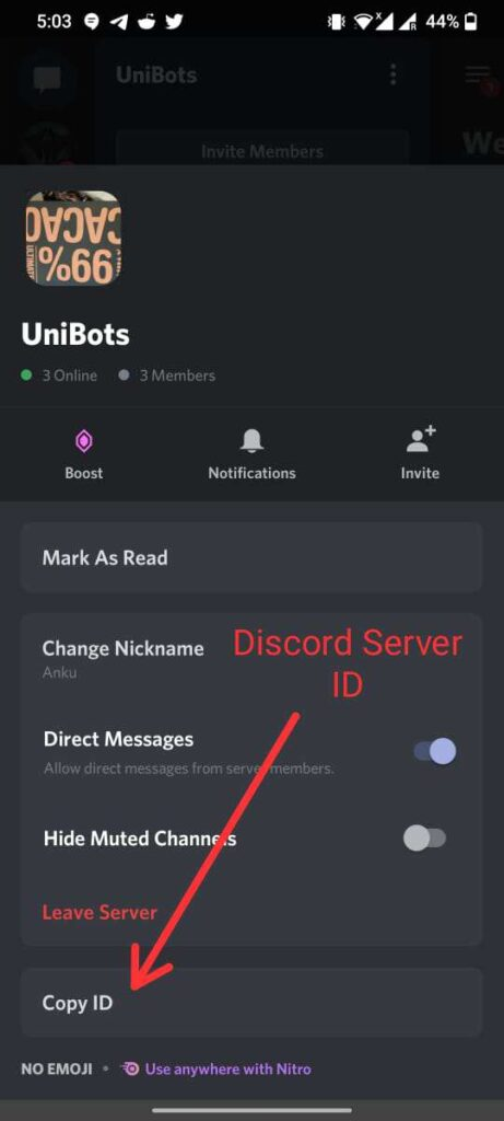 How to Get Discord Server ID