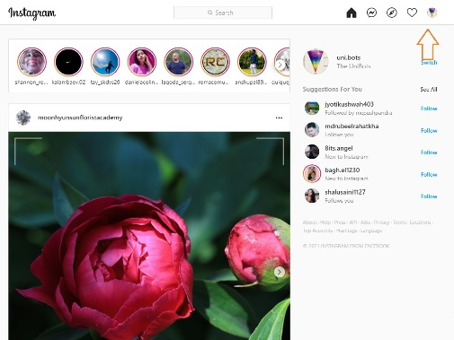 How to see Instagram Reels Watch History