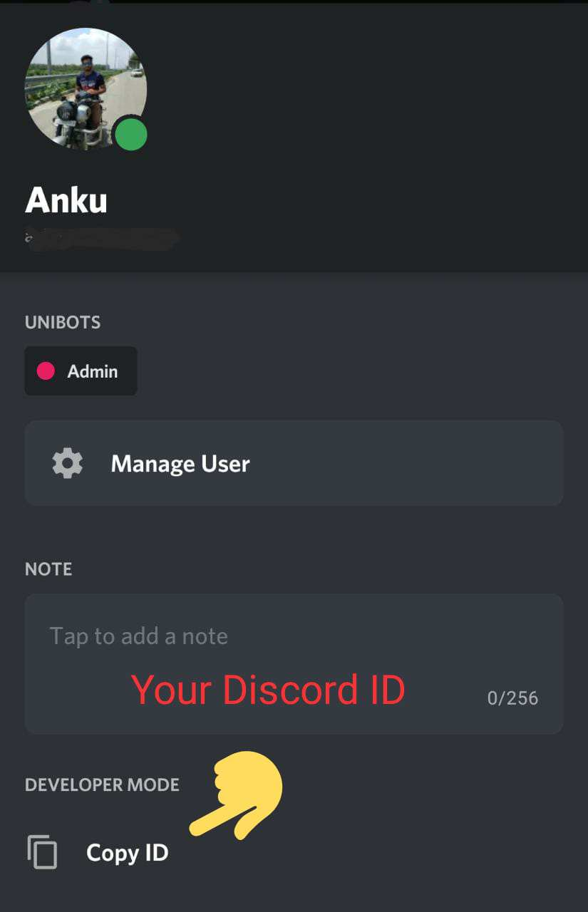 Discord Profile ID